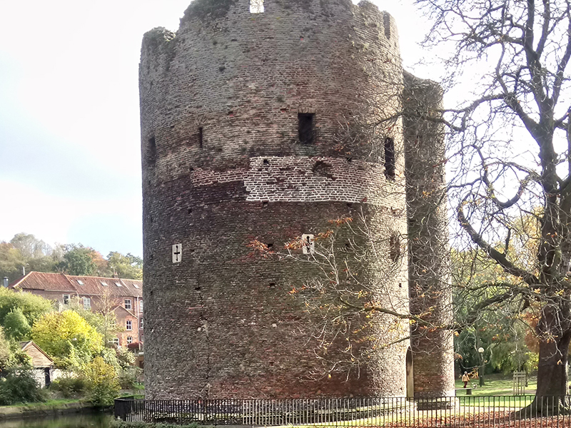 cow tower norwich paul dickson tours