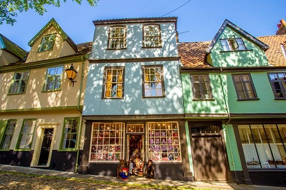 the bear shop elm hill norwich